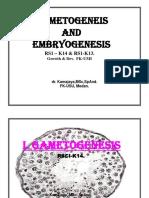 Embrio Gr&DecUMI