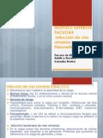 1 Vias urinarias.pptx.ppt
