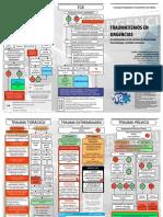 Traumatismos en Urgencias.pdf