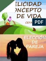 FELICIDAD CONCEPTO DE VIDA - copia (1)