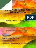 Portafolios desesibilizacion(1)