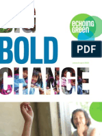 Echoing Green 2010 Annual Report