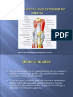 435287725-Lesoes-Do-Mecanismo-Extensor-Do-Joelho.pdf