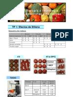 Resultado TP1 2010-analia (1)