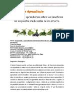 Proyecto de Aprendizaje las plantas medicinales.docx
