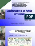 Caracterizando PYMES en Venezuela.ppt