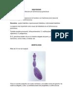 HIDATIDOSIS.docx
