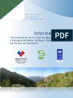 Linea_base_ambiental_y_ecologica_Cantillana.pdf