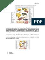EL RANKING DE LOS ALIMENTOS DE MEJOR CALIDAD NUTRITIVA SEGÚN UNIVERSIDAD YALE