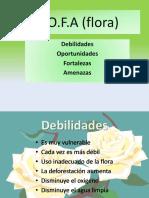 D.O.F.A flora
