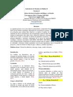 MFll-Informe 2