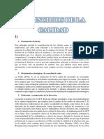 8_principios_de_la_calidad.docx