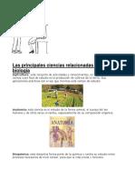 Las principales ciencias relacionadas con la biología