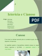 SEMINARIo_completo[1][1]