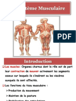 Le_syst_me_Musculaire