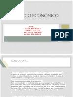 version completa de economia.pptx
