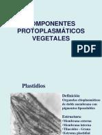 Clase 2_Plastidios_carbohidratos
