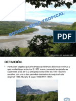 bosque seco tropical