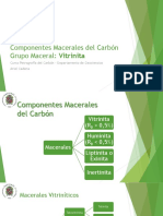 Componentes Macerales Carbon - Vitrinita
