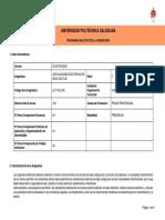 Programa_Analitico_Asignatura_552215937427-277259