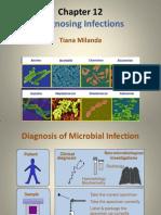 12. Mikro klinik