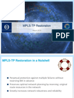LSP_Restoration2
