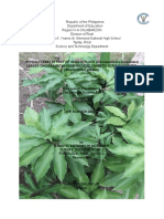 HYPOGLYCEMIC PROPERTY OF INSULIN PLANT