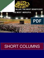SHORT COLUMNS (ACI 318-14).pdf