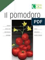 CeC_POMODORO_Estratto_Web.pdf