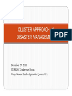 CLUSTER_APPROACH_in_Disaster_Management