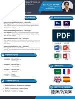 Cv Design PDF