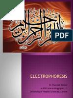 ELECTROPHORESIS.pptx original