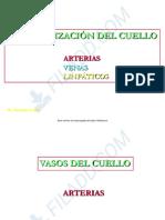 Cuello Irrigacion  Linfaticos 2018