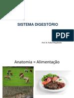 SISTEMA DIGESTÓRIO- CAV ORAL