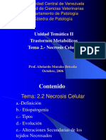 Necrosis Celular[1].ppt