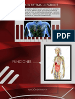 sistema linfatico ANATOMIA