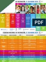 Esquema de Vacunacion 2020 Frente DEC