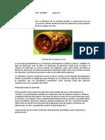 Tarea 2 - Corrosión y depositación