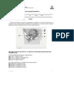 DocGo.Net-Trnsmissão de Vida e Sistema reprodutor.docx.pdf