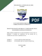 ReconocimiemtofacialEjemplo2019.pdf