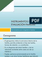 INSTRUMENTOS DE EVALUACION FAMILIAR.pdf