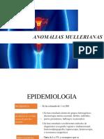 anomalias mullerianas 2