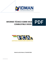 INFORME COMBUSTIBLE WIDMAN