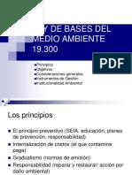 230650715-Ley-de-Bases-Del-Medio-Ambiente