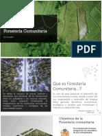 Forestería-Comunitaria