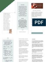 triptico-san-marcos.pdf