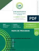 mapa-de-procesos