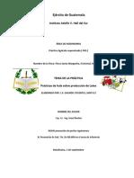GALINDO PRACTICA INDICE