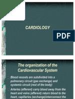 Cardiology 1