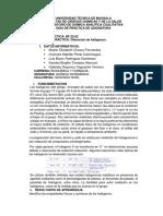 practicas de quimica inorganica